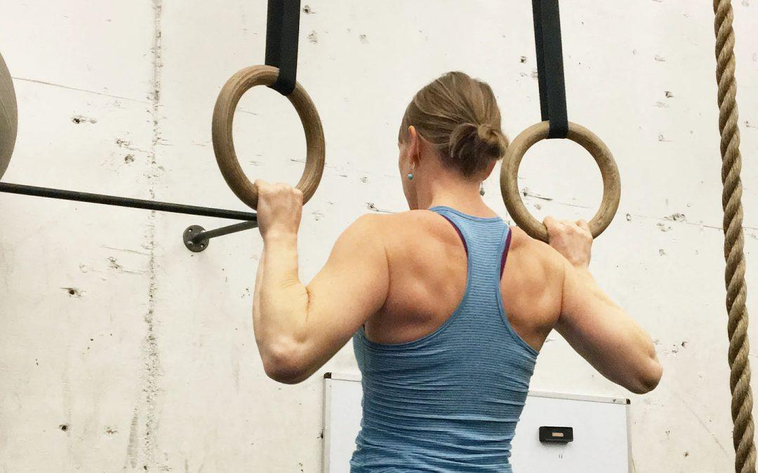De Vijf Elementen van training